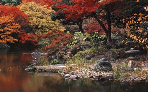 http://garywolff.com/koishikawa_korakuen.jpg